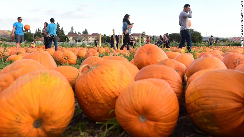 Pumpkin season is upon us: Why we seem to embrace fall earlier every year