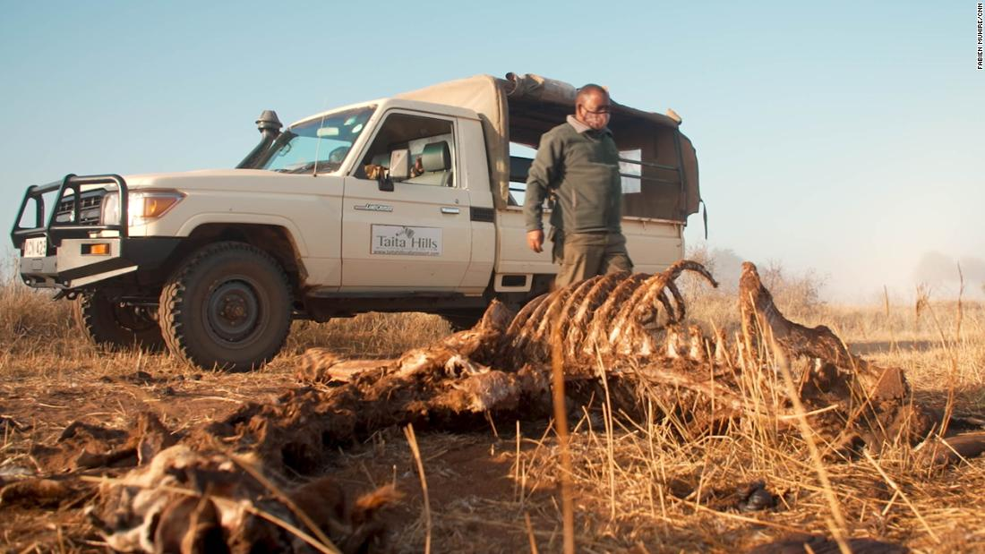 Bushmeat poaching is on the rise in Kenya as Covid hunger drives hunt for antelopes and giraffes