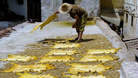 Hides drying in the sun at Chouara Tannery in Fez, Morocco. Bone tools are still used by some leather workers today.