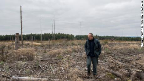 Peter Meyer shows an area where trees were completely destroyed by the bark beetle.