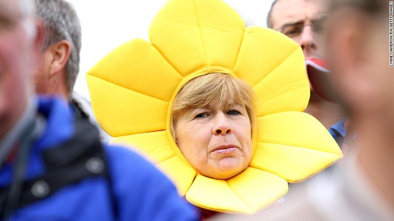A golf fan dressed as a daffodil during the 38th Ryder Cup in Wales in 2010.