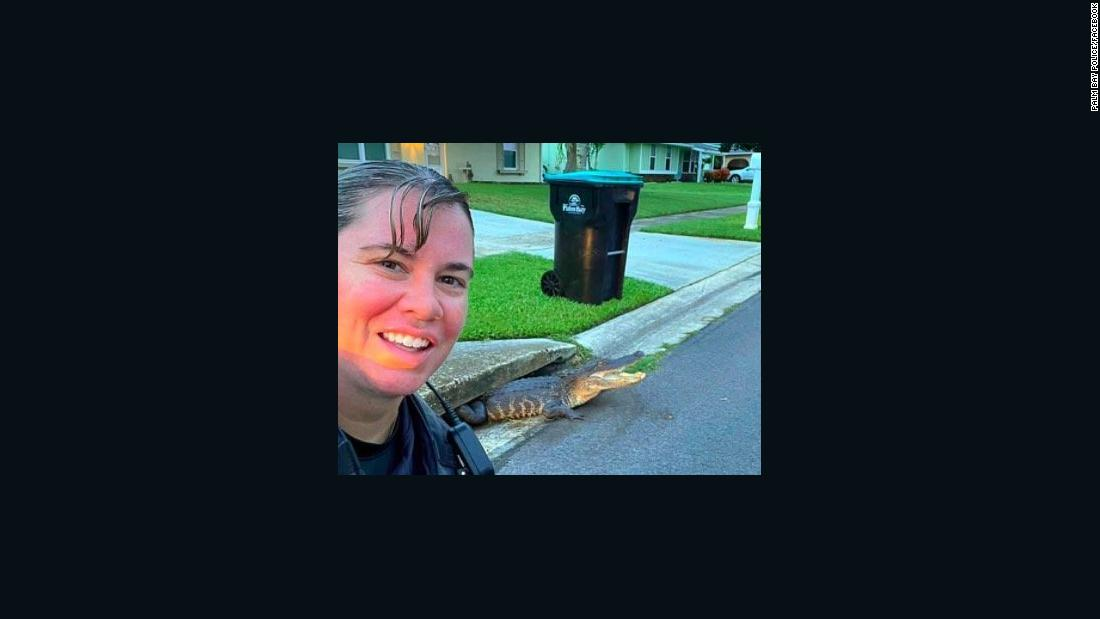 Cop takes selfie with gator stuck in storm drain
