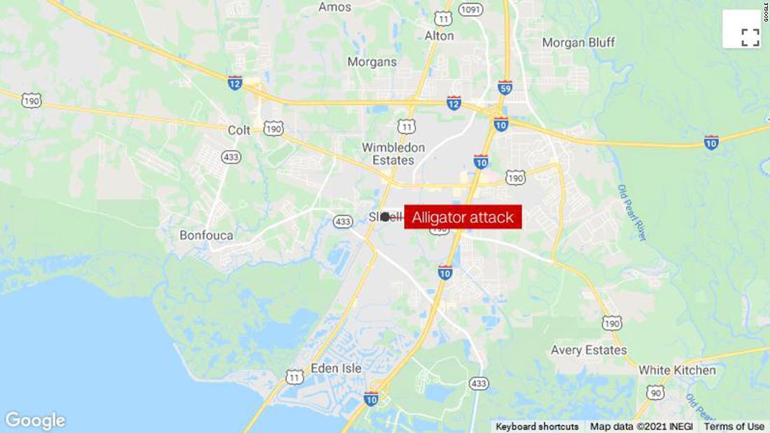 Coroner identifies remains inside 500-pound alligator as man who went missing after Hurricane Ida