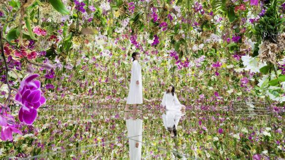 Image for Step inside a 'floating' flower garden in Tokyo