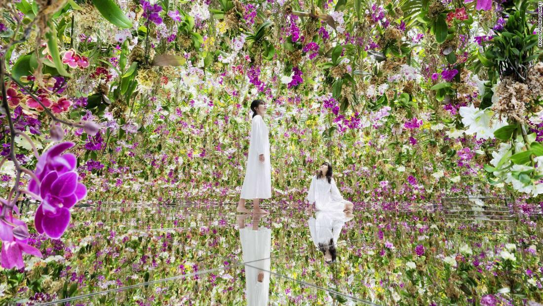 Step inside a 'floating' flower garden in Tokyo
