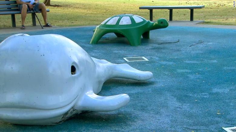 Child dies after contracting brain-eating amoeba at a Texas splash pad