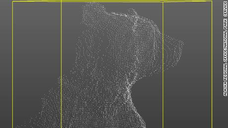 A point cloud of a bear that can be used to create a 3D model.