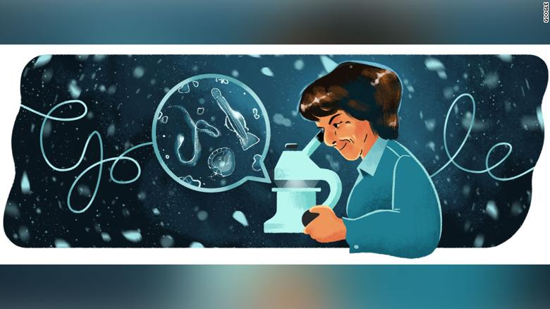Google celebrates marine biologist María de los Ángeles Alvariño González with latest Doodle