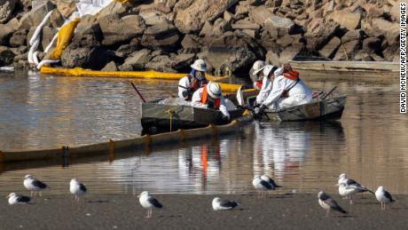 Workers in boats attempt to clean up oil floating near gulls in the Talbert Marshes as a spill of 3,000 barrels of oil, about 126,000 gallons, from an offshore oil rig hits shore and sensitive wildlife habitat in Newport Beach, Calif., October 3, 2021.