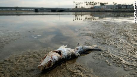 What we know so far about the California oil spill