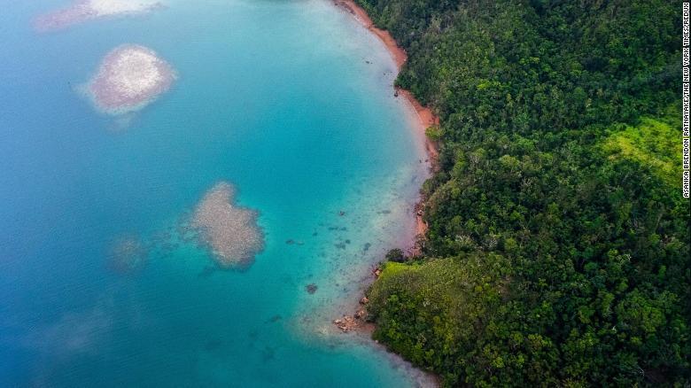 The shoreline of Kadavu Island in Fiji, where rising sea levels have led to coastal erosion.