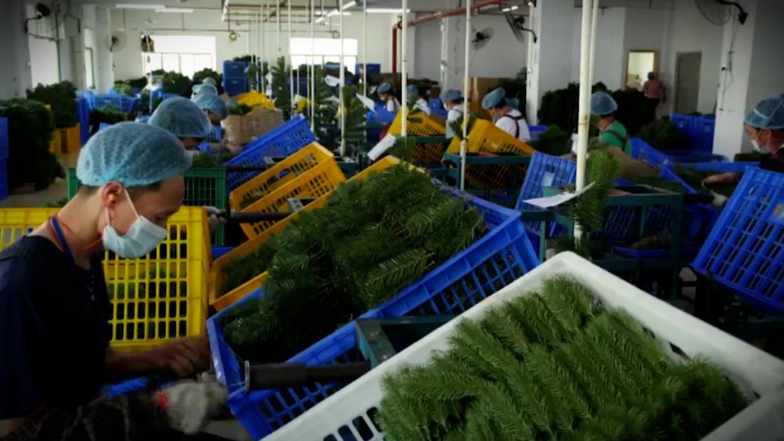 Why Christmas trees may be hard to come by this year? CNN looks inside a factory in China