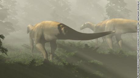 Supuestamente un enorme fósil de dinosaurio carnívoro en realidad pertenece a otra cosa