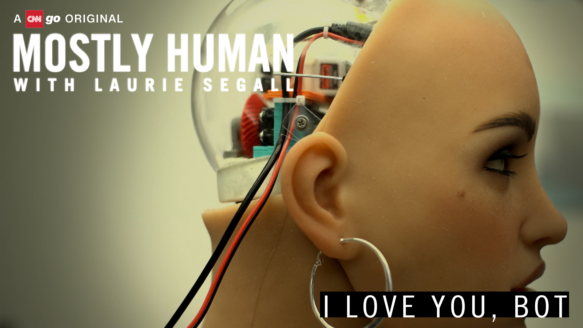 Mostly Human I Love You Bot CNNMoney